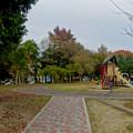 写真: 大高緑地公園 No - 5