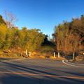 写真: 山下しずおが公約違反して勝手に土地の一部を売却しようとしてる、小牧市農業公園予定地 - 4:売却予定地