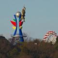 写真: イトーヨーカドー犬山店の駐車場から見た、モンキーパークの塔と観覧車 - 2