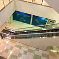 写真: 運営会社「小牧土地開発」社長・速水昭典の経営失敗によって破綻したラピオ - 22:封鎖されてる3階部分