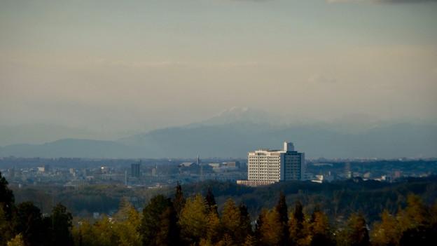 愛・地球博記念公園駅から見えた(たぶん)雪を戴く伊吹山 - 1
