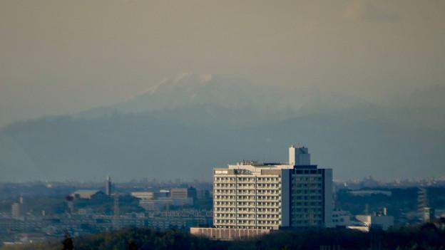 愛・地球博記念公園駅から見えた(たぶん)雪を戴く伊吹山 - 2