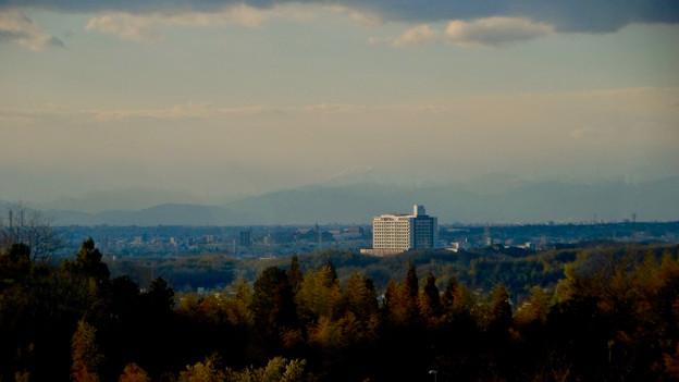愛・地球博記念公園駅から見えた(たぶん)雪を戴く伊吹山 - 3