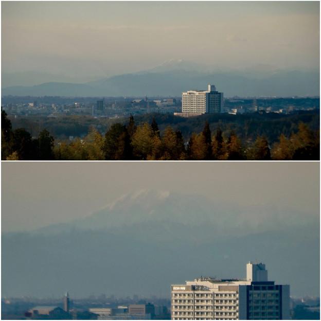 写真: 愛・地球博記念公園駅から見えた(たぶん)雪を戴く伊吹山 - 5