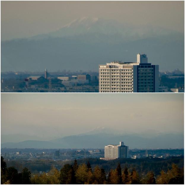 愛・地球博記念公園駅から見えた(たぶん)雪を戴く伊吹山 - 6