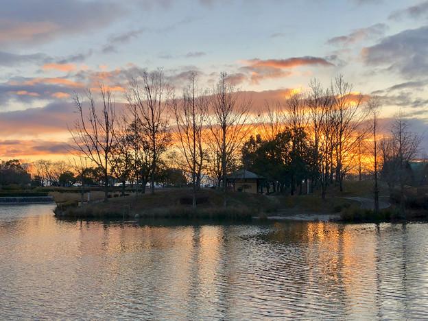 落合池の夕焼け - 2