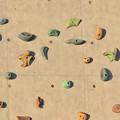 写真: パークアリーナ小牧のクライミングウォール - 5