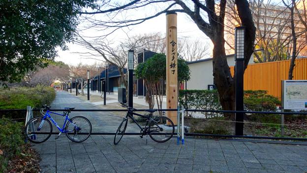 写真: 今月(2018年3月)末にオープン予定の「金シャチ横丁」:宗春ゾーン No - 3