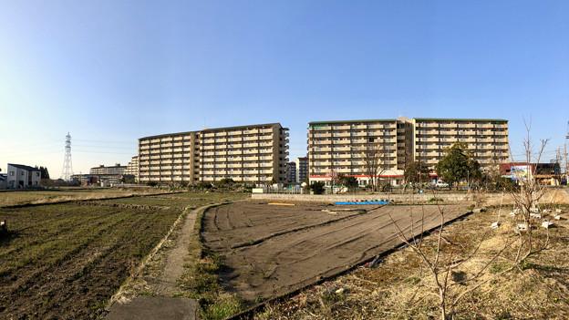 写真: 県営岩崎住宅 - 3(パノラマ)