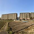 県営岩崎住宅 - 3(パノラマ)