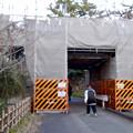 写真: 改修工事中だった名古屋城 二之丸大手二之門 - 3