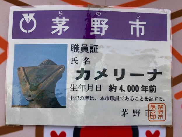 旅まつり名古屋 2018 No - 8:茅野市の土偶モチーフのキャラ「カメリーナ」