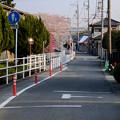 写真: 満開だった天満天神社の桜 - 1
