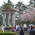 Photos: ものすごく沢山の花見客がいた鶴舞公園(2018年4月1日) - 9