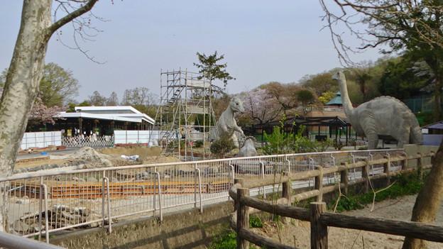 改装工事中の古代池 - 1