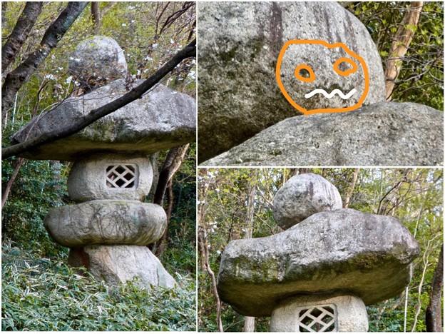 東山動植物園:パンプキン顔(ジャック・オー・ランタン)が浮かび上がって見えた中国庭園の石灯籠 - 5