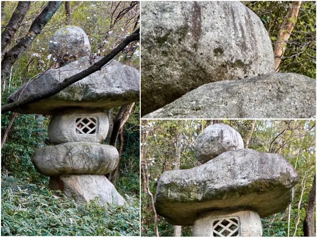 東山動植物園:パンプキン顔(ジャック・オー・ランタン)が浮かび上がって見えた中国庭園の石灯籠 - 6