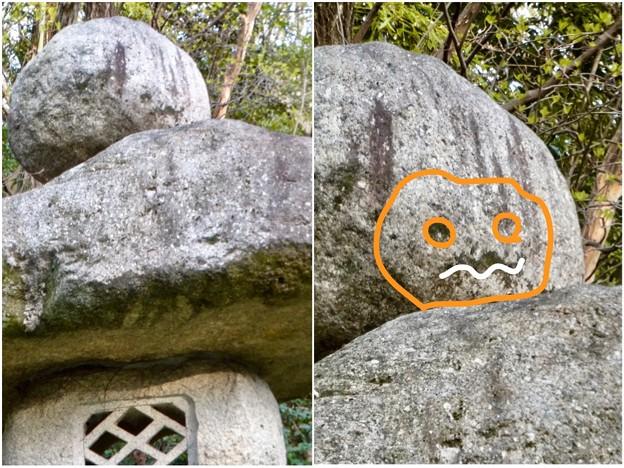 東山動植物園:パンプキン顔(ジャック・オー・ランタン)が浮かび上がって見えた中国庭園の石灯籠 - 10