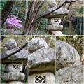 写真: 東山動植物園:パンプキン顔(ジャック・オー・ランタン)が浮かび上がって見えた中国庭園の石灯籠 - 10