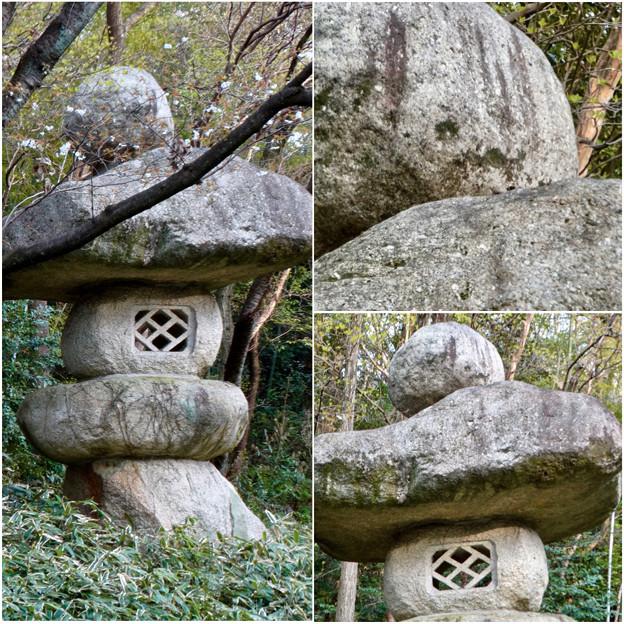 写真: 東山動植物園:パンプキン顔(ジャック・オー・ランタン)が浮かび上がって見えた中国庭園の石灯籠 - 12