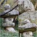 Photos: 東山動植物園:パンプキン顔(ジャック・オー・ランタン)が浮かび上がって見えた中国庭園の石灯籠 - 12