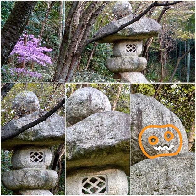 東山動植物園:パンプキン顔(ジャック・オー・ランタン)が浮かび上がって見えた中国庭園の石灯籠 - 15