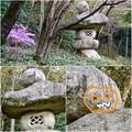 写真: 東山動植物園:パンプキン顔(ジャック・オー・ランタン)が浮かび上がって見えた中国庭園の石灯籠 - 16