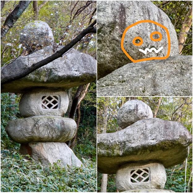 東山動植物園:パンプキン顔(ジャック・オー・ランタン)が浮かび上がって見えた中国庭園の石灯籠 - 17