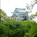 写真: 名古屋城東門から見た天守閣 - 1