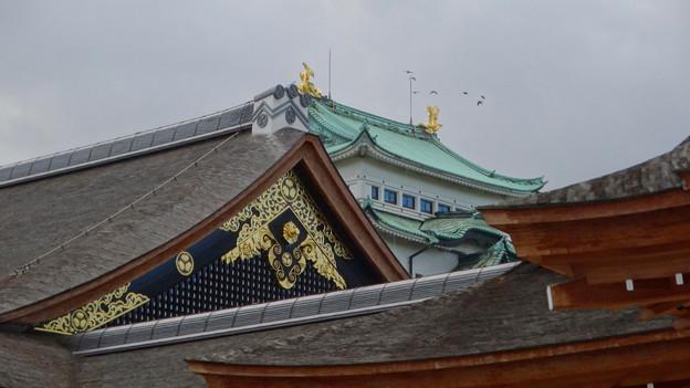 名古屋城(2018年4月)No - 7:本丸御殿越しに見えた天守閣