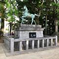 写真: 挙母神社 No - 59:アニメチックな顔をしてる馬の像