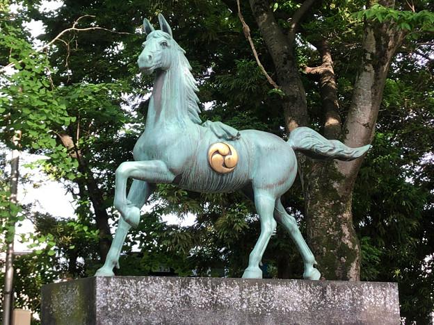 挙母神社 No - 60:アニメチックな顔をしてる馬の像