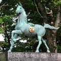 写真: 挙母神社 No - 60:アニメチックな顔をしてる馬の像