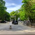 写真: 挙母神社 No - 62:南側入り口