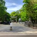 写真: 挙母神社 No - 63:南側入り口