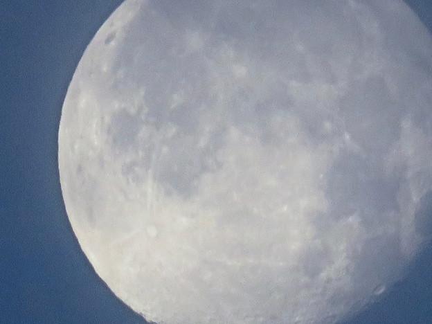 WX3000よりくっきり見えた、SX730 HSデジタル160倍で撮影した早朝の満月 - 1