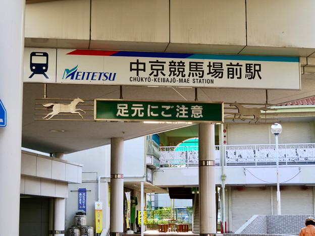 中京競馬場前駅 - 3:看板に馬!
