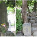 Photos: 桶狭間古戦場 - 39:今川義元の墓