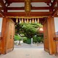 Photos: 高徳院 No - 17:山門