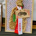 Photos: 有松絞りまつり 2018 No - 131