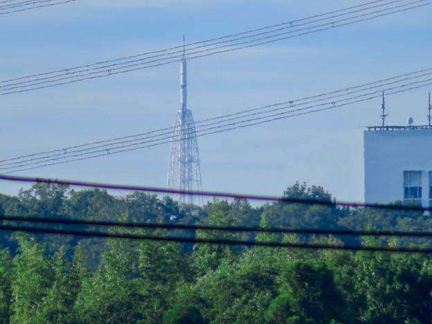 桃花台から見た瀬戸デジタルタワー - 4