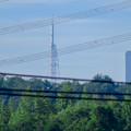 写真: 桃花台から見た瀬戸デジタルタワー - 4