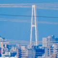 写真: 桃花台から見えた名港中央大橋(名港トリトン) - 2