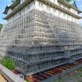 名古屋城:石垣調査用の足場を設置?(2018年6月17日) - 18