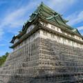 名古屋城:石垣調査用の足場を設置?(2018年6月17日) - 23