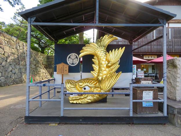 名古屋城:正門前の金シャチ - 1