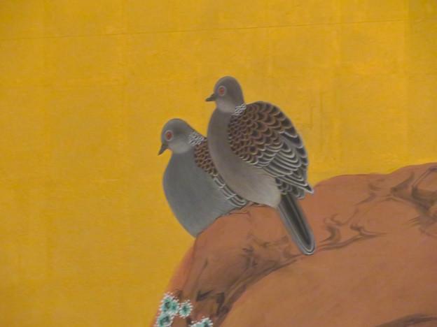 名古屋城本丸御殿 - 9:障子に描かれた鳩