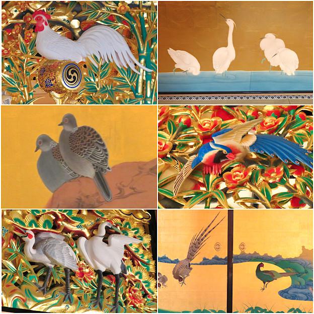名古屋城本丸御殿の装飾に使われてる鳥 - 1