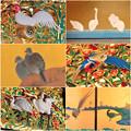 写真: 名古屋城本丸御殿の装飾に使われてる鳥 - 1