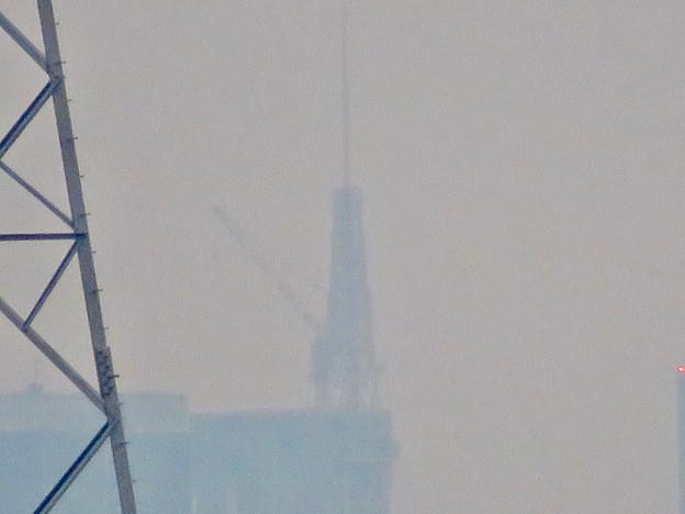 桃花台から見た名古屋テレビ塔